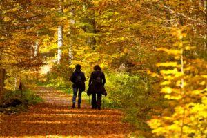 Podzimní turistika na Boubíně