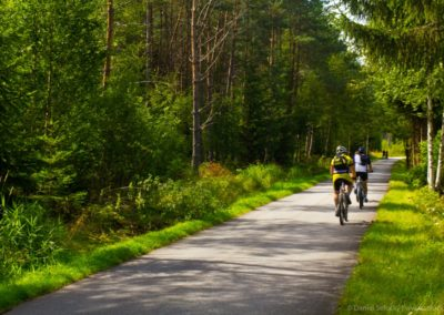 Cyklostezka Nová Pec