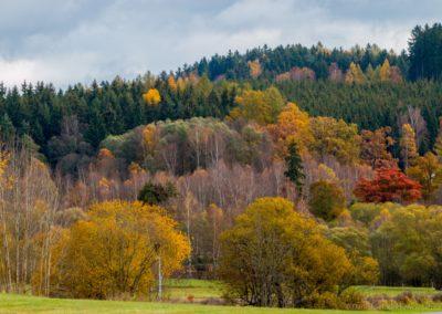 Barevný podzim na Lipně