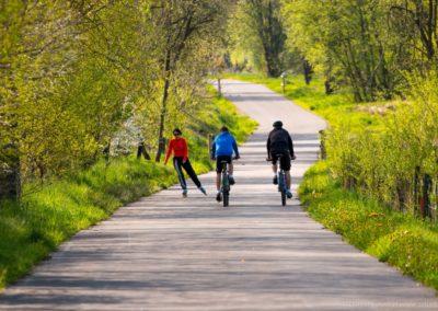 Cyklostezka u Horní Plané