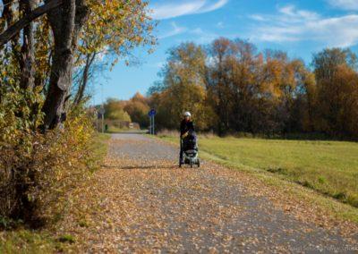 Podzim na cyklostezce